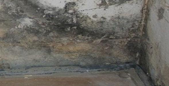 Gut gemocht Schimmelpilzbefall in Wohnräumen - Ingenieurbüro Klaus Kunath GR77